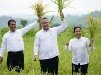 Dorong Pembangunan Desa, Kementerian Desa Gandeng APP Sinarmas