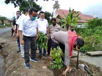SMSI dan Polres Tanah Karo Penanaman Pohon di Desa Batukarang Kecamatan Payung