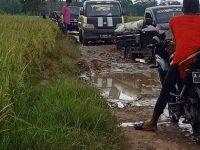 Akibat Jalan Rusak, Petani Kesulitan Angkut Hasil Panen