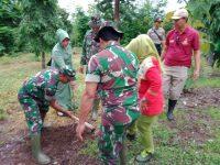 TMMD Ke- 107 Aksi Peduli Lingkungan Melalui Penghijauan